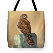 Female Kestrel Study Tote Bag