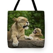 Momma Lion Over Cubs Attitude Tote Bag