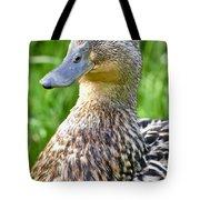 Female Mallard Duck Close Up Tote Bag