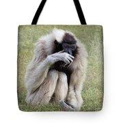 Female Pileated Gibbon, Gladys Porter Zoo Tote Bag