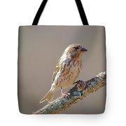 Female Purple Finch Tote Bag