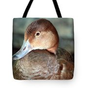 Female Redhead Duck Tote Bag