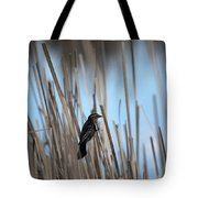 Female Redwing Tote Bag