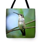 Female Ruby Throated Hummingbird Tote Bag