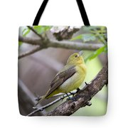 Female Scarlet Tanager Tote Bag