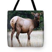 Feme Elk Tote Bag