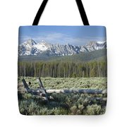 Fence And The Sawtooths Tote Bag