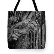 Fence In The Tropics Tote Bag