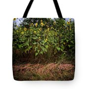 Fence Line Sunflowers Tote Bag