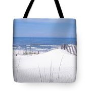Fence On The Beach, Gulf Of Mexico, St Tote Bag