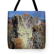 Fence Post Encrusted With Lichen  Tote Bag