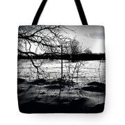 Fenced In Tote Bag