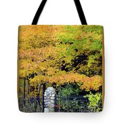 Fenced In Color Tote Bag