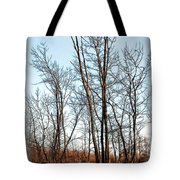 Fenced In Landscape Tote Bag