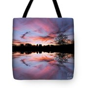 Fencing Reflections Tote Bag