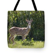 Feral Axis Deer Tote Bag