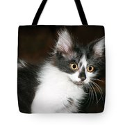 Feral Kitty Tote Bag