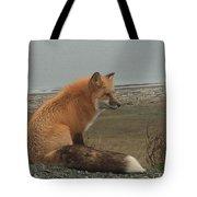 Ferdinand Fox  Tote Bag