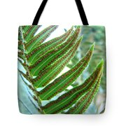 Fern Art Print Green Forest Ferns Baslee Troutman Tote Bag