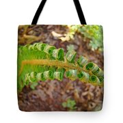Fern Branch Leaves Art Prints Forest Ferns Natures Baslee Troutman Tote Bag
