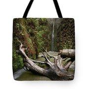 Fern Canyon Creek Tote Bag