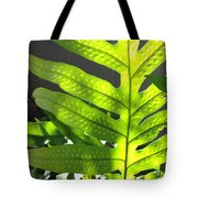 Fern Delight Tote Bag