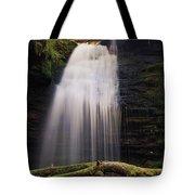 Fern Falls, Id Tote Bag