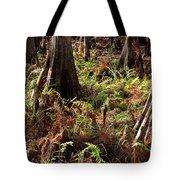 Fern Forest Floor Tote Bag