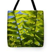 Fern Fronds Against Blue Sky Tote Bag