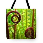 Fern Fronds Fine Art Photography Forest Ferns Green Baslee Troutman Tote Bag