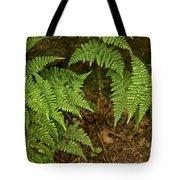 Fern Garden Tote Bag