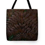 Fern Kaleidescope Tote Bag