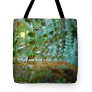 Fern Macro Forest Ferns Art Sunlit Giclee Prints Baslee Troutman  Tote Bag