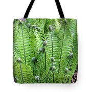 Fern Meet And Greet Tote Bag