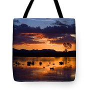 Fern Ridge Sunset Tote Bag