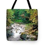 Fern River Oregon Tote Bag