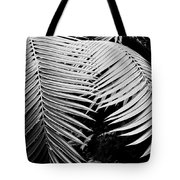 Fern Room Cycads Tote Bag