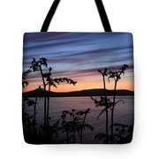 Fern Sunset Tote Bag