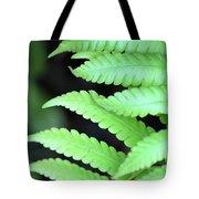 Fern Tips - Digital Painting Tote Bag