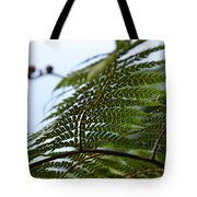 Fern Tree Frond Tote Bag