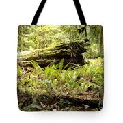 Fern Valley Tote Bag