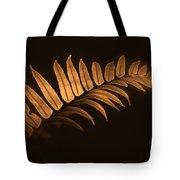 Fern Zen Tote Bag
