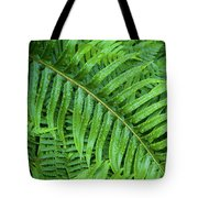 Ferns After A Spring Rain Tote Bag