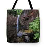 Ferns And Rocks By Abiqua Falls Tote Bag