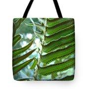 Ferns Art Prints Green Forest Fern Sunlit Giclee Baslee Troutman Tote Bag