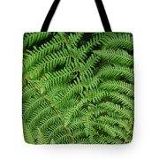 Ferns Au Naturale Tote Bag