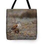 Ferruginous Hawk In Field Tote Bag