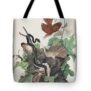 Ferruginous Thrush Tote Bag