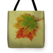 Feuilles D'automne I / Fall Leaves I Tote Bag