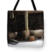 Fiber And Feather Tote Bag
